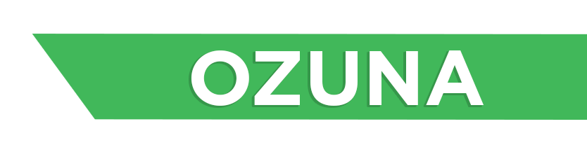 Ozuna Digital Marketing